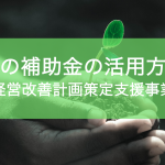 国の補助金活用〜経営改善計画策定支援事業〜